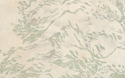 Aged japanese paper with a floral print. Closeup on aged japanese traditional paper with a floral print; paper was found among other documents inside a damaged Stock Images