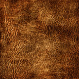 Aged leather texture Stock Image