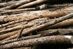 Aged Log Pile Stock Images