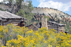 Aged log structures. Log cabin and shed with foreground of yellow rabbit brush royalty free stock image