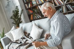 Senior man at home retirement concept sitting browsing laptop. Aged male at home in the living room sitting on the coach using laptop concentrated stock image