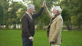 Aged men with walking sticks giving high five smiling camera, male friendship. Stock footage stock video