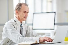 Aged office worker at office. Authentic elderly office worke typing on laptop in office with glass walls Stock Photos