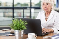 Aged office worker with laptop Stock Image