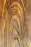 Aged old pine wood grunge texture Stock Photo