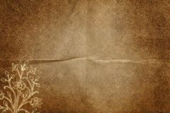Aged paper Stock Images