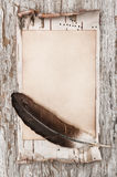 Aged paper, feather and birch bark on the old wood Stock Photo