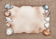 Aged paper with sea shells on sacking background. Aged paper with sea shells on texture of sacking background stock images