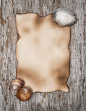Aged paper and seashells on the old wood Royalty Free Stock Images