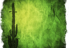 Aged paper texture. Aged paper with cactus: can be used as background Royalty Free Stock Images