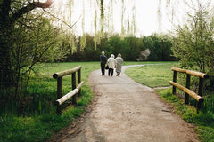 Aged people walking royalty free stock photography