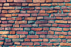 Aged red brick wall background. Royalty Free Stock Photo