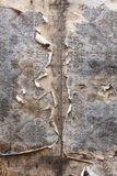 Aged room wall background with torn vintage wallpaper. Royalty Free Stock Images