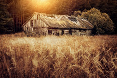 Aged shed or barn. Old barn or shed in field at sunset, long exposure Stock Photography