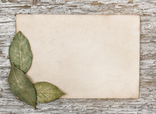 Aged sheet of paper and dry bay leaves Stock Images