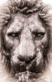 Aged Style Photo Of Lion Statue. Retro Black And White Detail Of A Lion Statue stock image