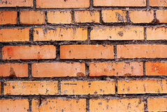 Aged wall bricks brown texture Royalty Free Stock Image