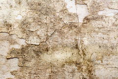 Aged wall interior texture Stock Image