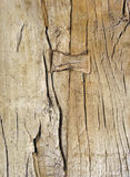 Aged Weathered Wood with Butterfly Key Joint. Stock Image