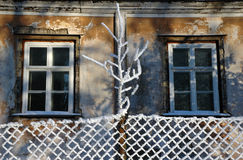 Aged windows at winter Stock Photo