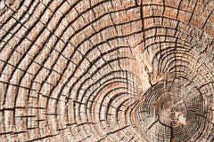 Aged wood texture Royalty Free Stock Images