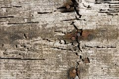 Aged wood wall Royalty Free Stock Photo