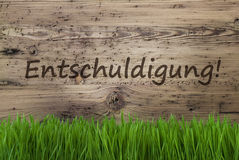 Aged Wooden Background, Gras, Entschuldigung Means Sorry Royalty Free Stock Photo