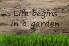 Aged Wooden Background, Gras, Quote Life Begins In A Garden Stock Photography