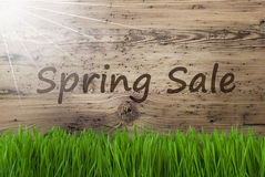 Aged Wooden Background, Gras, Text Spring Sale Royalty Free Stock Image