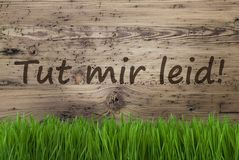 Aged Wooden Background, Gras, Tut Mir Leid Means Sorry. German Text Tut Mir Leid Means Sorry. Spring Season Greeting Card. Aged Wooden Background With Gras Royalty Free Stock Photography