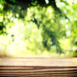 Aged wooden boards with a  foliage backdrop Stock Photos