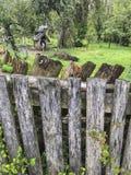 Aged wooden fence of a garden in spring. An aged wooden fence of a garden in spring royalty free stock photos
