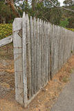 An aged wooden paling fence Royalty Free Stock Photos