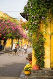 Aged yellow wall with climbing flower plant against street with old man on bike on background in Hoi An ancient town. Hoi An is UN Stock Images