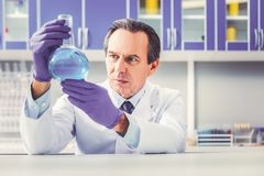 Ageing experienced chemist holding glass tube. Experienced chemist. Ageing experienced chemist feeling busy while holding big glass tube with blue substance royalty free stock photos