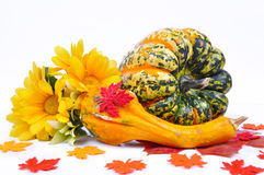 Agencement d'automne des potirons photographie stock