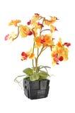 Agencement de fleur artificielle Image libre de droits