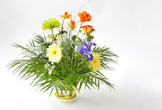 Agencement de fleur fraîche Image libre de droits