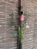 Agencement de fleur japonais de source Images stock