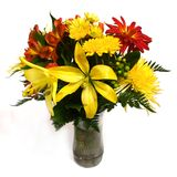 Agencement de fleur sur le fond blanc #2 image stock
