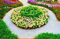 Agencement de jardin Image stock