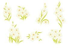 Agencement des fleurs Image libre de droits
