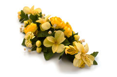 Agencement des fleurs de source Photo stock