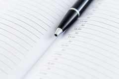 Agenda Planistyczny dzienniczek Z piórem Obraz Royalty Free