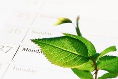 Agenda verde de la compañía (CSR) Foto de archivo