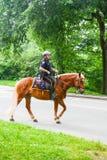 Agente da polícia de New York a cavalo fotos de stock royalty free