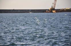 Aggancio della gru nel porto di Candia a basso in Grecia fotografia stock