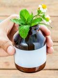 Aggiusti di erbe fresco di sanità alternativa della tenuta nei wi della bottiglia Fotografie Stock Libere da Diritti