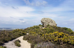 The Agglestone Rock. On Godlingston Heath. Studland in Dorset, consisting of weathered Tertiary sandstone and overlooking Poole Harbour Stock Photos