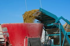 The aggregate for the extraction of silage from the pit loads small-cut food. In the forage dispenser Royalty Free Stock Image